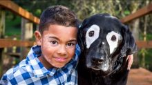 Boy and Dog Share the Same Medical Condition