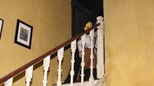 Go behind the scenes of Universal Studios' Halloween Horror Nights... if you dare!