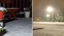 'It's a snowy wonderland': Aussie region hit with 'unusual' autumn dumping