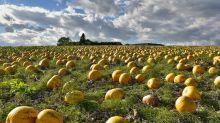 DeFi Yield Farming Aggregator APY.Finance Raises $3.6M in Seed Funding