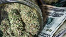 In Case You Missed It, Profit Estimates for Marijuana Stocks in 2019 Are Still Falling