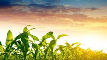 Soybeans Higher 3rd Day In A Row, Coffee Prices Hit New Highs