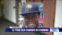 12-Year-Old Charged as An Adult in Playground Killing