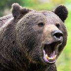 Dow Jones Futures: Stock Market Sells Off Bearishly; Tesla Extends Battery Day Dive