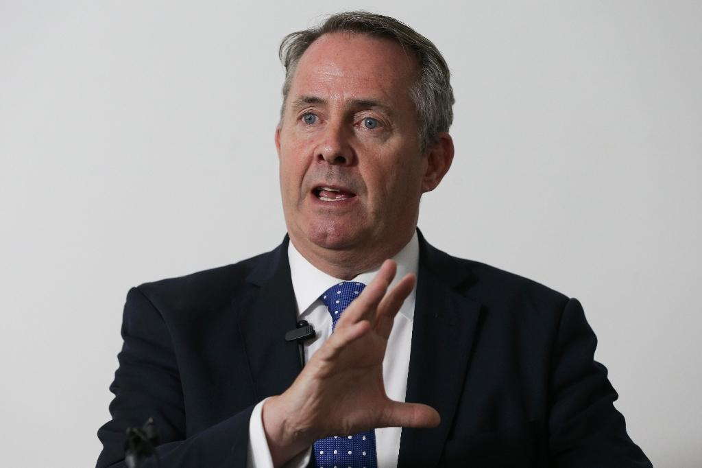 "International Trade Secretary Liam Fox says he has opened ""very fruitful"" trade talks with Canada and is reportedly to be heading to the United States next week"