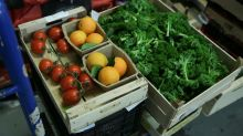 Human diet causing 'catastrophic' damage to planet: study