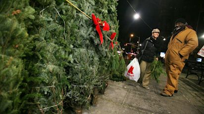 Here's the busiest day to buy a Christmas tree