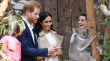 Prince Harry and Meghan Markle Kickstart Australia Visit by Cuddling With Koalas