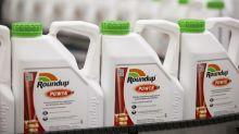 Roundup Judge Loosens His Grip on Monsanto Ghosts Haunting Bayer