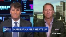Cannabis M&A activity booms despite regulatory hurdles