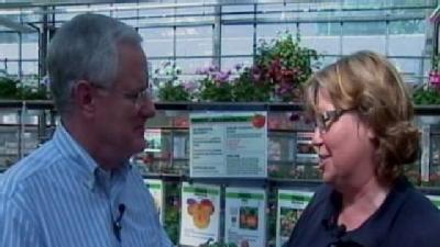 Sunday Gardeners Talk Tomato Plants, Insect Killers