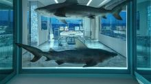 Suite diseñada por Damien Hirst cuesta 88.000€ la noche
