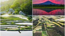 【相集】日本超靚郊外風景 稻田倒影富士山變攝影熱點