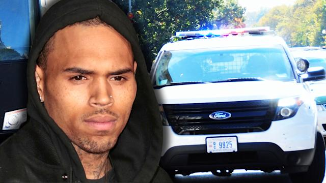 Chris Brown Arrest Charges Reduced to Misdemeanor