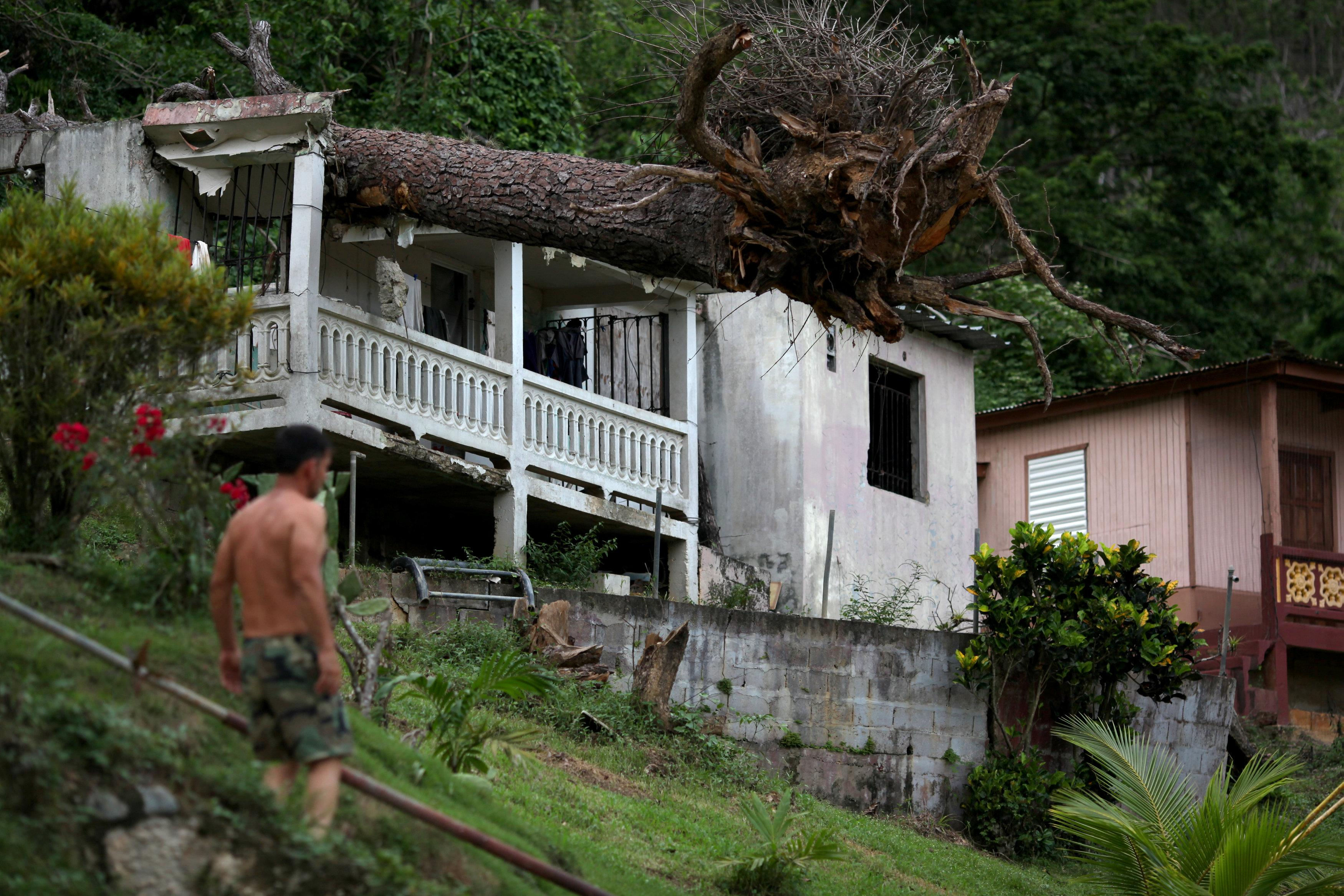 A man stands near a house with a fallen tree on its roof, after hurricane Maria hit the area in September, in Utuado, Puerto Rico November 9, 2017. Picture taken November 9, 2017. REUTERS/Alvin Baez
