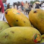 Pakistan's mango exports are plummeting because of the pandemic —and fruit vendors are suffering