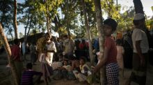 Myanmar 'planned' Rohingya attacks, possibly 'genocide': UN rights chief