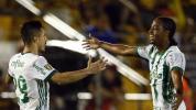 Palmeiras confirma favoritismo contra o Novorizontino e fica perto da vaga