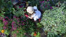 Garden tools for beginners: 10 essentials to kick-start your green-fingered journey