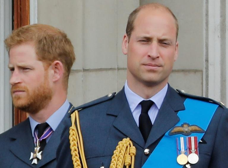Prince Harry and Prince William have admitted drifting apart