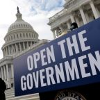 Government shutdown 'causing FBI to lose informants' at centre of terrorism investigations