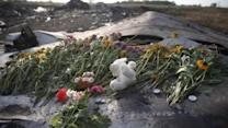 Canadian man aboard MH17 remembered by sister