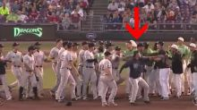 Tigers minor leaguer suspended 30 games for throwing ball during brawl