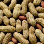 Peanut allergy treatment shows promise