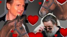 Hollywood's New Hottest Trend Is The 'Horse-mance'
