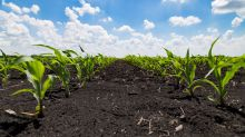Nutrien Uses Global Fertilizer Strength to Offset Weak U.S. Planting in Q2