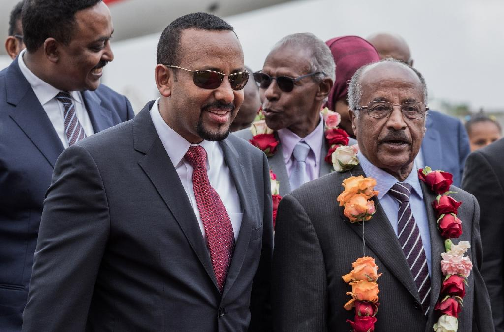Ethiopia and Eritrea agreed to end their war after intensive talks driven by Ethiopian Prime Minister Abiy Ahmed (front left) seen here with Eritrean Foreign Minister Osman Saleh Mohammed (AFP Photo/YONAS TADESSE)