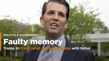 Unapologetic Trump Jr.: Not troubled that I met with Russian