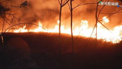 龍井又見火燒山 公墓延燒逾3公頃