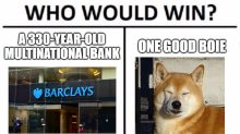 Dogecoin No Longer Pup After Tripling Past $50B, Exceeding UK Bank Barclays