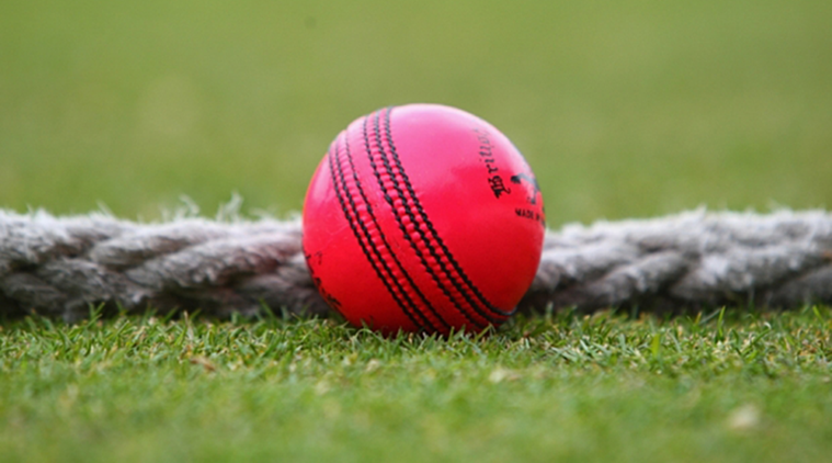 Five Indian players practise with pink ball today