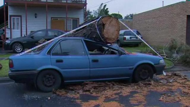 Eastern Australia damaged by severe winds