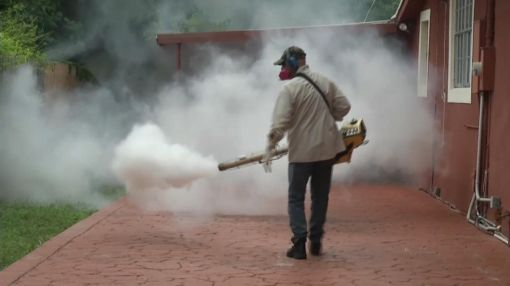Florida Zika Virus Outbreak: Students to Get Zika Lessons, Mosquito Protection