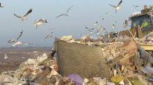 Rotting Garbage Will Light 80,000 Aussie Homes