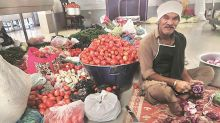 Rs 400/kg in Pakistan, but sky-high prices not a problem as devotees feast on tomato dish at Kartarpur Sahib