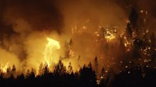 As wildfires raged, the Forest Service was capturing the immensity in VR