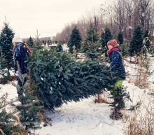 Christmas tree shortages continue, signaling a dying industry?