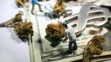 Better Marijuana Stock: Canopy Growth Corporation vs. Auxly Cannabis Group Inc.