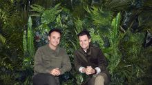 I'm A Celebrity… 'bullying' and animal welfare complaints rejected