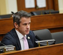 GOP Rep. Adam Kinzinger compared the Republican Party to the Titanic