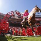 """Chiefs have no plans to change nickname but """"time to retire"""" Warpaint horse mascot"""