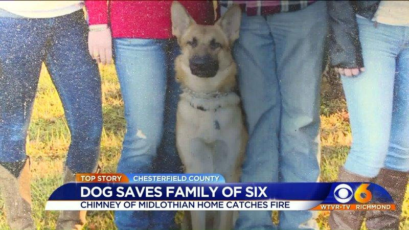 Dog Saves Family From Mobile Home Fire