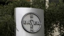 Roundup cancer verdict sends Bayer shares sliding