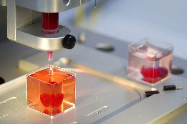 Image result for 'First' 3D print of heart with human tissue, vessels unveiled
