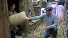 Essonne : le centenaire culturel de la Grande guerre se poursuit