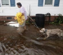 North Carolina woman charged after practicing veterinary medicine without a license while sheltering pets during Florence